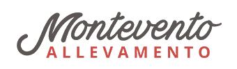Bovaro del Bernese e Terranova | Allevamento Montevento.