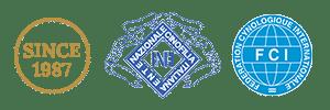 Allevamento riconosciuto ENCI FCI dal 1987
